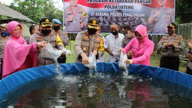 Photo of Dukung Ketahanan Pangan, Kapolres Pekalongan Tebar 1000 Ekor Bibit Lele