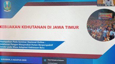 Photo of Sekdaprov Jatim Keynote Speaker Seminar Online Ketahanan Pangan