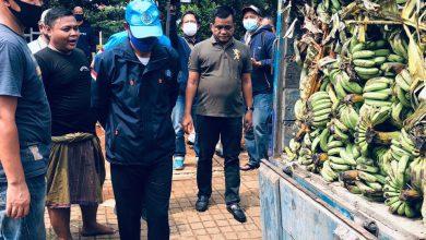 Photo of BNN Ungkap Ratusan Kilogram Ganja di Bekasi Dalam Truk Bermuatan Pisang