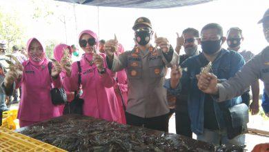 Photo of Kapolres Pekalongan Kota Dukung Kelompok Tani Udang Sampang Tigo