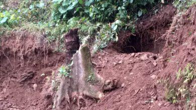 Photo of Diduga Kades Lakukan Pembiaran Perusakan Ekosistem Alam
