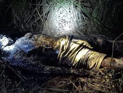 Geger Penemuan Mayat Pria Membusuk Ditengah Persawahan di Cilacap
