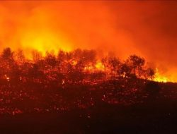 PBB Sebut Dunia Menuju Bencana Pemanasan Global Usai Gagal Kurangi Emisi